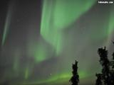 Aurora Swaying in the Heavens