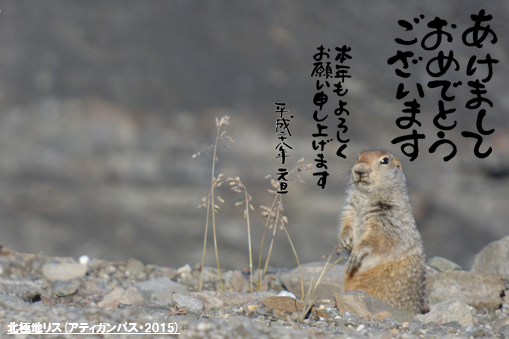 http://takenabe.com/weblog/images/NY2016.png